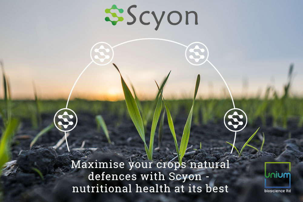 Scyon Plant Protection from Unium Bioscience
