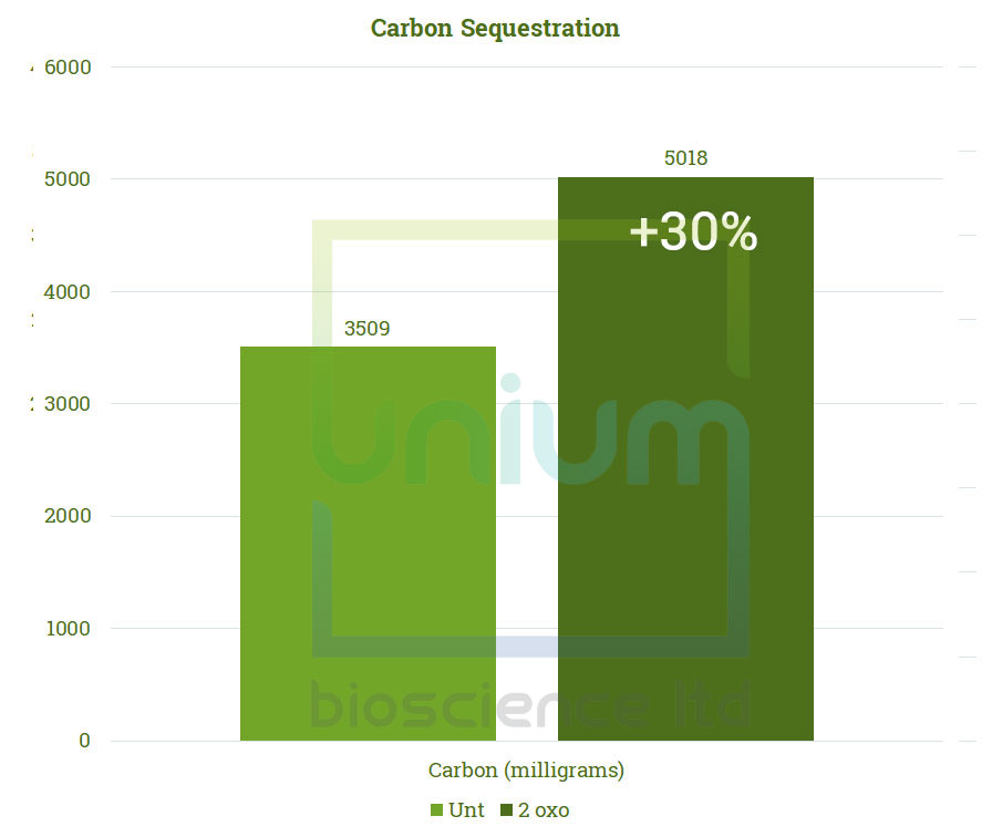 TWOXO Carbon Sequestration