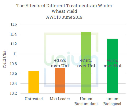 The Effects of Different Treatments on Winter Wheat Yield AWC13 June 2019