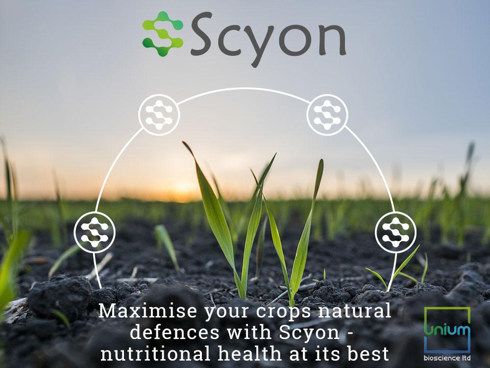 Scyon Plant Protection