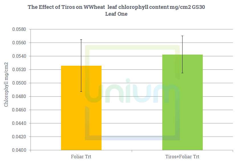 The Effect of Tiros on WWheat leaf chlorophyll content mg/cm2 GS30 Leaf One