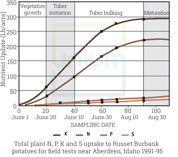 Total Plant N, P, K and S update to Russet Burbank potatoes for field tests