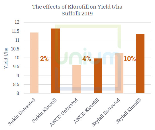 The effects of Klorofill on Yield t/ha Suffolk 2019