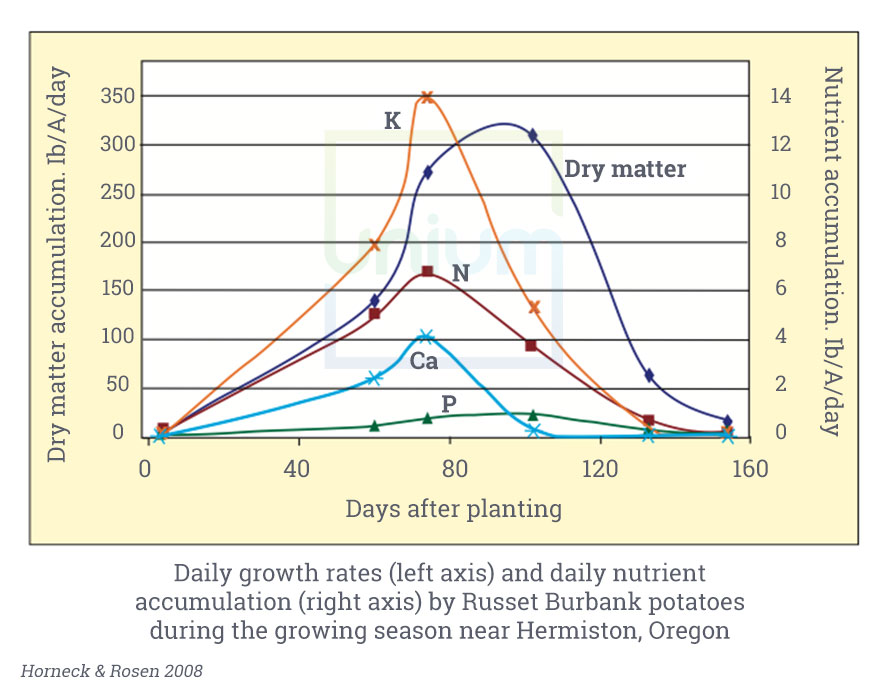 Daily growth rates and daily nutrient accumulation by Russet Burbank potatoes during the growing season