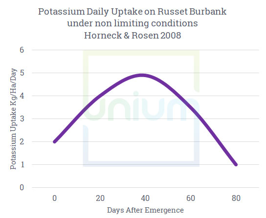 Potassium Daily update on russet burbank under non limiting conditions