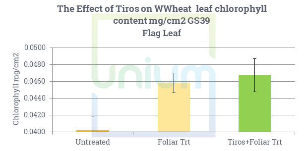 The Effect of Tiros on WWheat leaf chlorophyll content mg/cm2 GS39 Flag Leaf