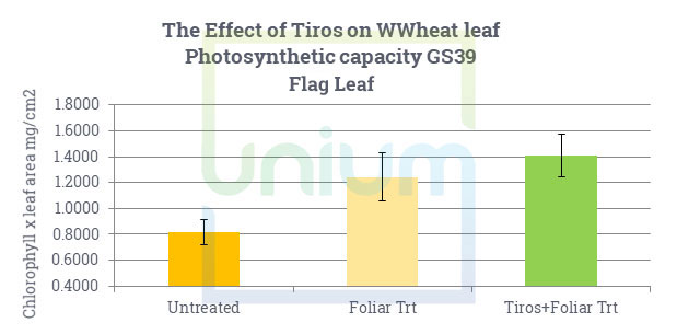 The Effect of Tiros on WWheat leaf Photosynthetic capacity GS39 Flag Leaf