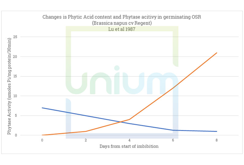 Changes is Phytic Acid content and Phytase acitivy in germinating OSR