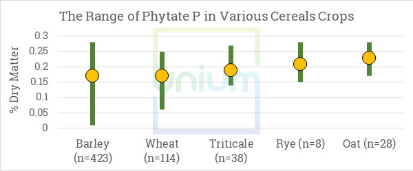 The Range of Phytate P in Various Cereal Crops