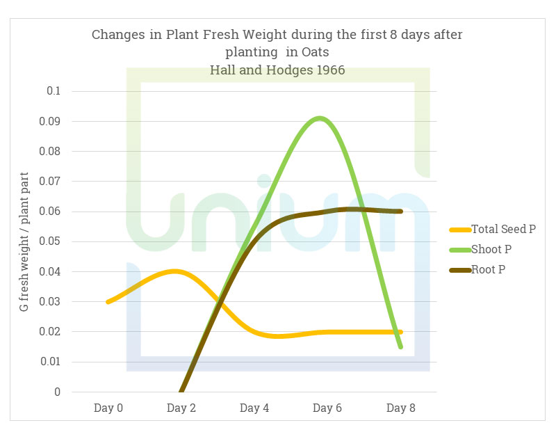 Changes in Plant Fresh Weight during the first 8 days after planting
