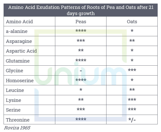 Amino Acid Exudation Patterns