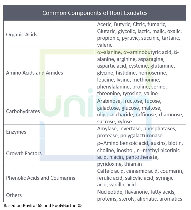 Root Exudates Table