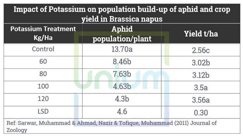 Impact of Potassium on population build-up of aphid and crop yield in Brassica napus
