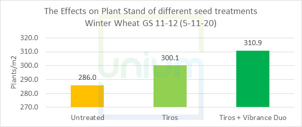 The Effects on Plant Stand of different seed treatments Winter Wheat GS 11-12