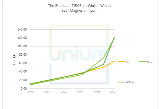 The Effects of TIROS on Winter Wheat Leaf Magnesium ppm