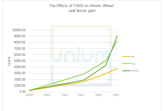 The Effects of TIROS on Winter Wheat Leaf Boron ppm