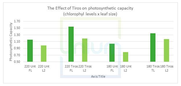 The Effect of Tiros on photosynthetic capacity (chlorophyl levels x leaf size)