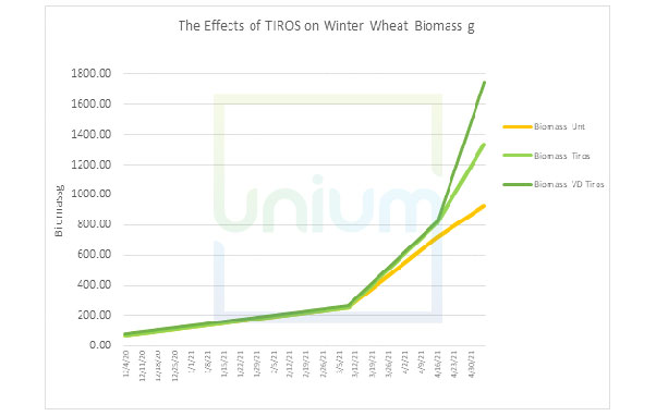 The Effects of TIROS on Winter Wheat Biomass g
