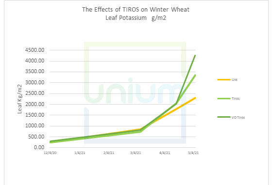 The Effects of TIROS on Winter Wheat Leaf Potassium g/m2