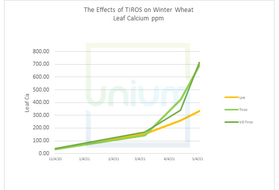 The Effects of TIROS on Winter Wheat Leaf Calcium ppm